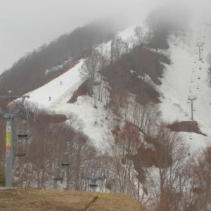 スキー2020-21シーズン~サツキマスの唄の巻~