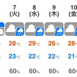 梅雨空が続きますね(T-T)