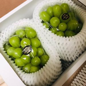 【岡山特産品】シャインマスカットと妊娠での体重変化