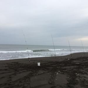 鮭釣り2020 海水温の影響かあいつの猛攻が・・・そして旭川にも奴が現れた!