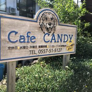 銀あずと旅行へ行ってきた!~Cafe CANDY~