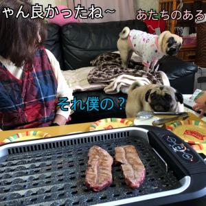 おうち焼肉で銀あずも久々のお肉!