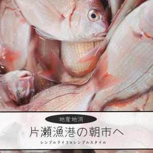 湘南ライフ| 片瀬漁港直売所に鮮魚を買いに。