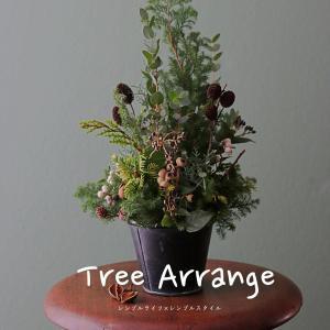 我が家のクリスマス|2019ツリーアレンジを作って愉しむ