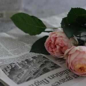 花のある暮らし|ピンクの花を飾る。自己肯定をアップさせたい人にもおすすめな色。