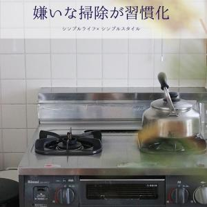 溜めがちだったキッチン掃除の習慣化!油汚れ&悪臭が漂うあの場所、魚焼きグリル掃除が習慣化しました!