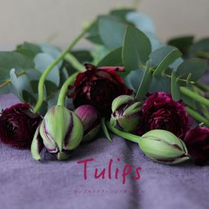 花のある暮らし|大人カラー de チューリップで楽しむ