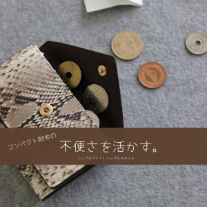 ダイソー|コンパクト財布の不便さを活かして小銭貯金!もしもの備えを兼ねた100円ダイソーのコインケースが使える!