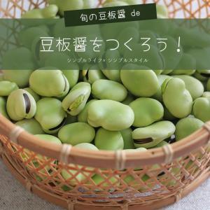自家製発酵調味料|旬のそら豆で豆板醤を作ろう!