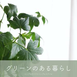 植物のある暮らし|モチの良い枝もの、Baby hands