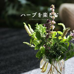 花のある暮らし|ハーブを楽しむ