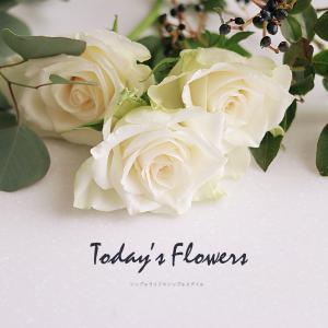 Today's Flower 花を楽しむ暮らし