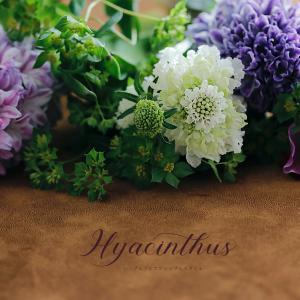 今週のプチしあわせ♡ | 見て楽しみ&香りで楽しめるヒヤシンス
