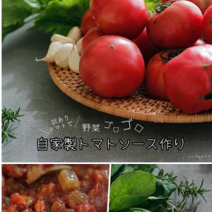訳ありトマト de 野菜ゴロゴロソースつくり