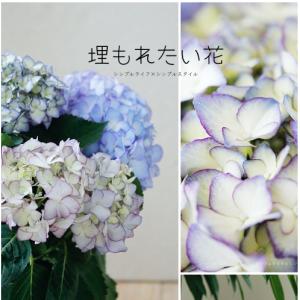 この花に埋もれたい。