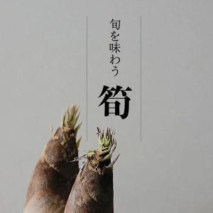 実家からの小包|旬の味を楽しむ。筍の保存方法