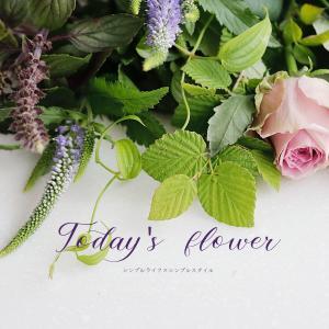 花のある暮らし|めずらしい色のチョイス! 今週のFLOWER
