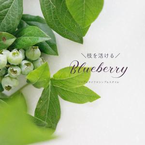 初夏の枝物|ブルーベリー