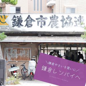 湘南の暮らし|鎌倉市レンバイで鎌倉やさいをお買い物♪