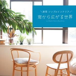 新居のシンプルインテリア|窓から広がる世界