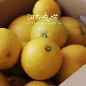 美味しい暮らし|柑橘フルーツでハチミツ&ミント漬け