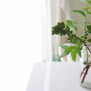 シンプルに枝を活ける 実ものも可愛い♡フレッシュなブルーベリーがおすすめ!