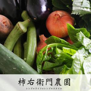 湘南藤沢|柿右衛門農園の無農薬野菜をお取り寄せ