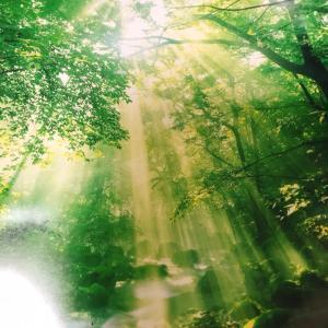 一日が始まる朝に、ほんの僅かでも有意義に感じられたら最高ですよね。