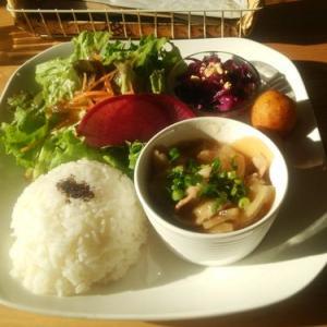 Cafe ikoro(ワンちゃんも一緒に入れるカフェ)