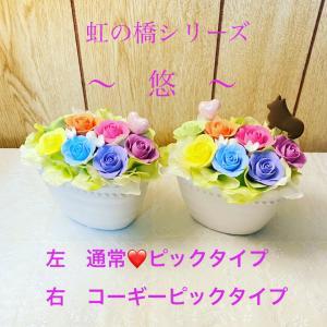 虹の橋シリーズ 悠 ペット用仏花