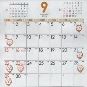 9月の営業