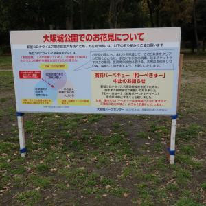 外出自粛要請中の大阪城公園