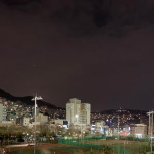 E-1観戦旅行 2日目(釜山) 〜なでしこジャパン優勝!