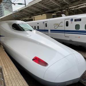 京都遠征1日目その1〜渡月橋、竹林の小径、トロッコ列車