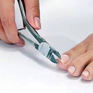 爪切りはタイミングが大切なのです
