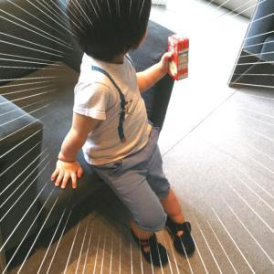 3歳発語なし知的障害疑い息子の発達検査③レアなケース!穴場のお台場