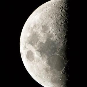 2019.11.4 上弦の月(月齢7)