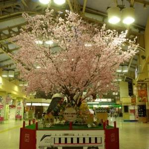 2020.3.19-21 春の青春18きっぷの旅、東京編(その3)