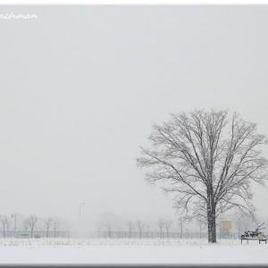 先が見えない吹雪の風景