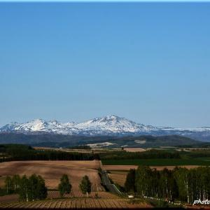大雪山連峰の春2(外出自粛中)