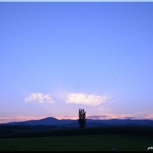 九月の丘風景