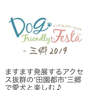 ドッグフレンドリーフェスタ 2019 in三郷