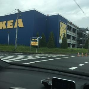 IKEAにニトリに無印に、、犬さんのラグ探し