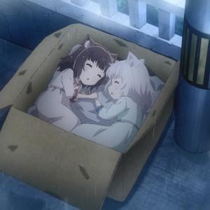 【ネコぱら】第2話 感想 捨てネコを放ってはおけない!