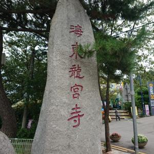 願いが叶う!釜山に行ったら必須の海東龍宮寺♪