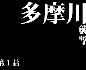 勝手にマイコース~多摩川左岸襲撃~