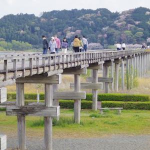 蓬莱橋 ②