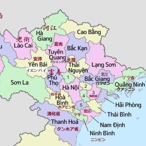 越南茶ー動画:イエンバイ省の野生茶がもてはやされている(安沛省溪江山雪茶树得到推崇)