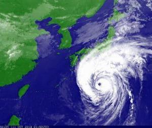 台風一過、皆様ご無事でしょうか?