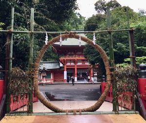 氷川神社ツアー7月から再開します~ (^ - ^)